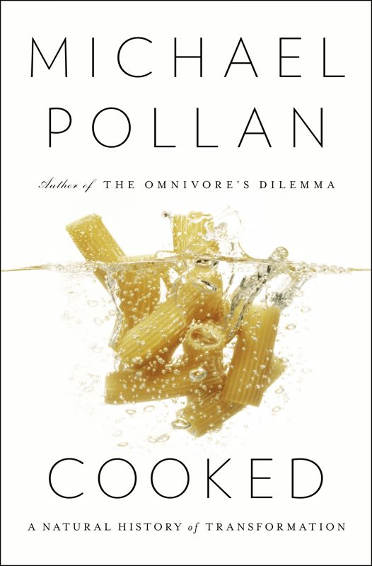 Michael Pollan's, <em>Cooked: A Natural History of Transformation</em>